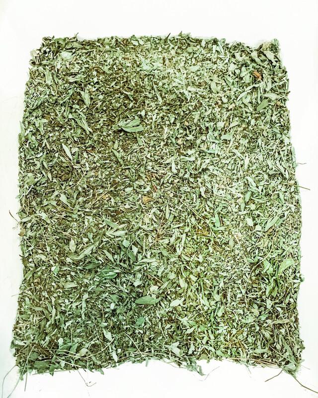 """Mega Mint"" Homegrown Herbal Tea Blend"