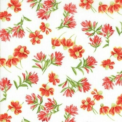 Wildflower VIII