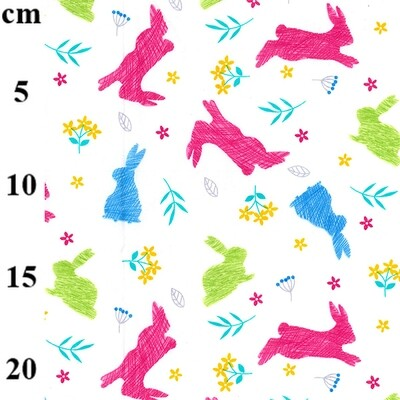 Jumping Rabbits