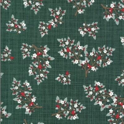 Winter Sprigs - Spruce