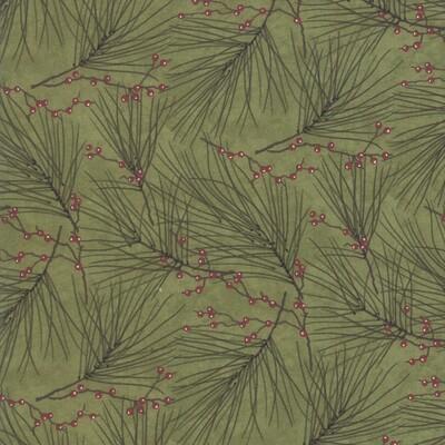 Pine Berries - Cedar