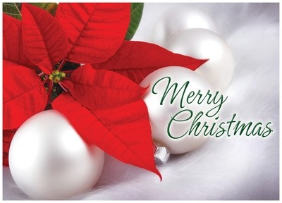 FRS 552 / 5161  Christmas Card