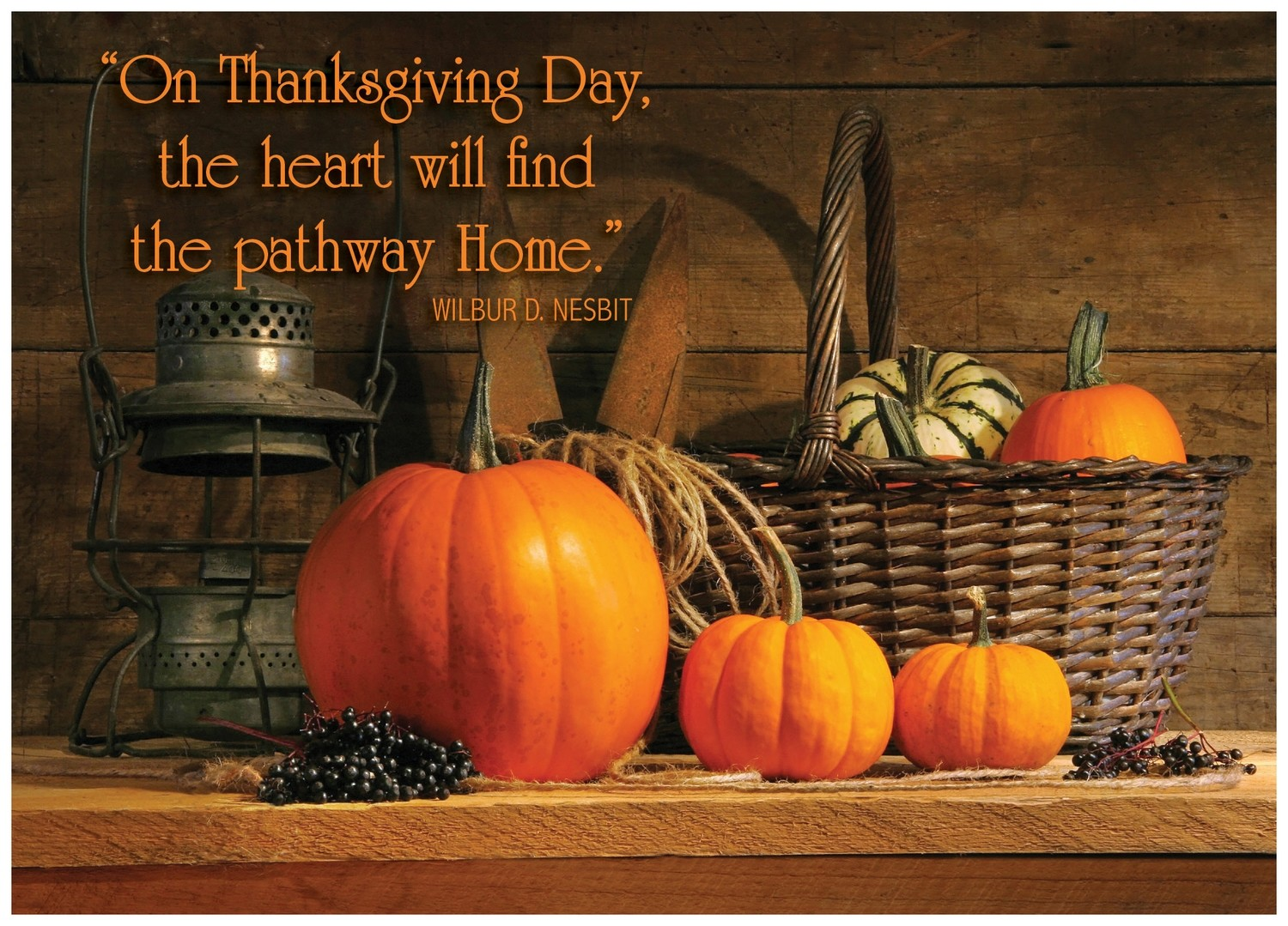 FRS 596 / 7902   Thanksgiving Card