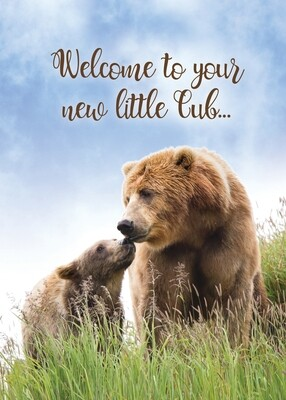 FR1888   Congratulations Baby Card