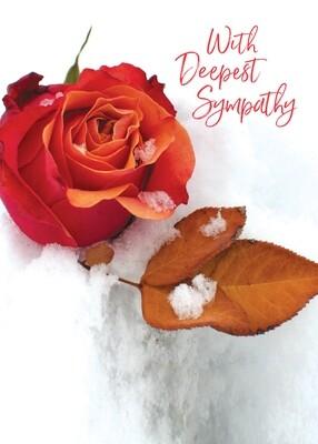 FR2300   Sympathy Card