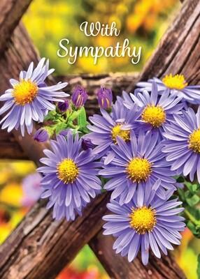 FR2301   Sympathy Card