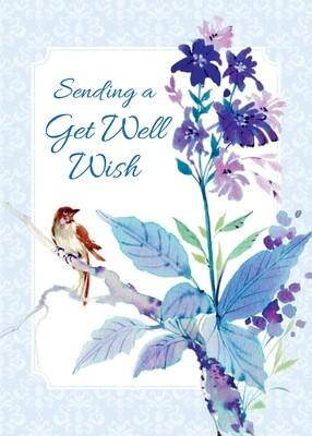 FR7143   Get Well Card
