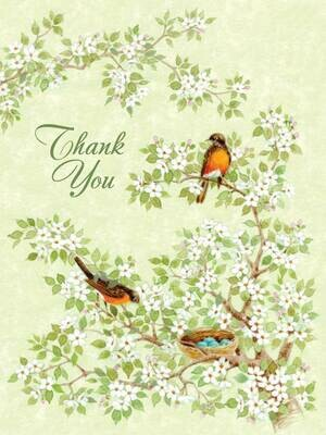 BLNote069   Blank Thank You Boxed Notecard