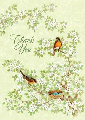 BLCard069   Blank Thank You Card