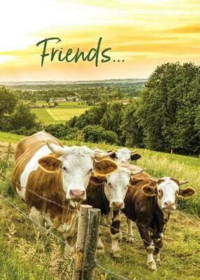 PS16056 Friendship Card