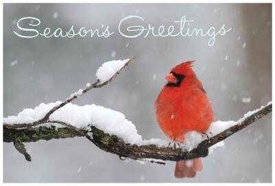 FRS 508 / 6097 Christmas Card