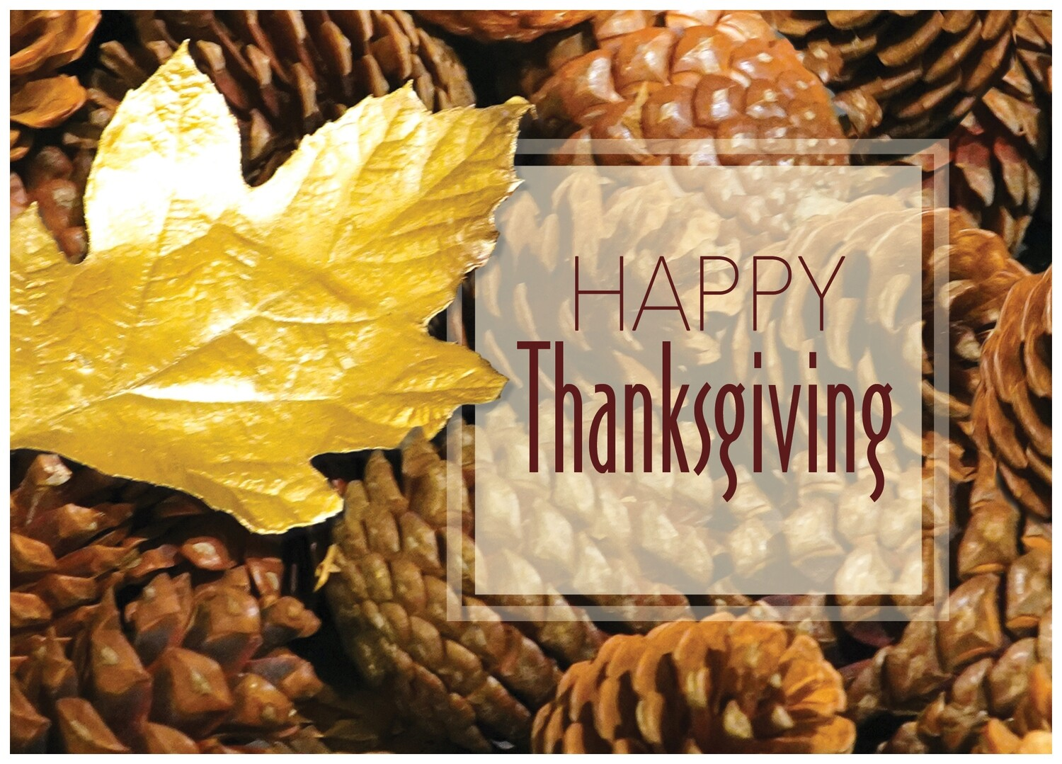 FRS 532 / 7966   Thanksgiving Card