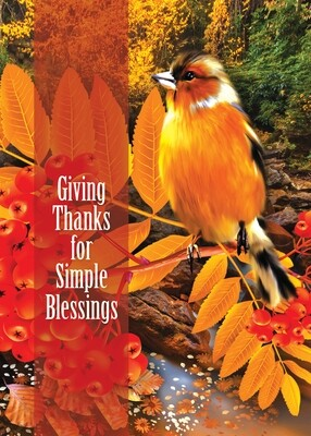FRS 591 / 7969   Thanksgiving Card