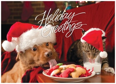 FRS 515 / 5166 Christmas Card
