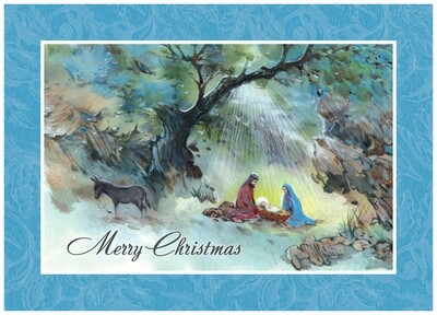 FRS 527 / 5178 Christmas Card
