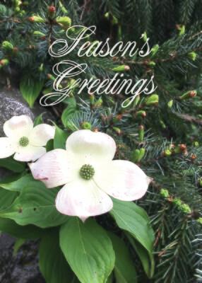 FRS 535 / 5185 Christmas Card