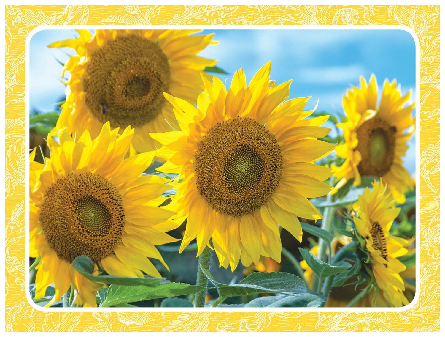 FR4089 Boxed Note Card
