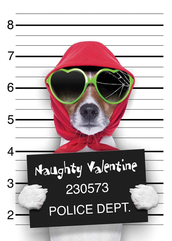VPS01158 Valentine's Day Card