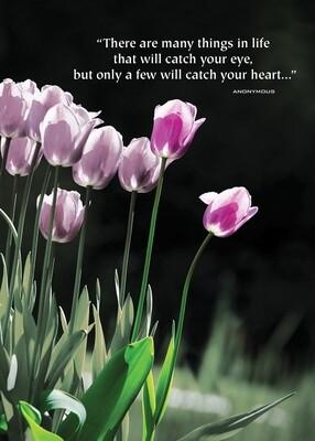 VPS06010 Valentine's Day Card