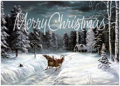 FRS 609 / 5313 Christmas Card