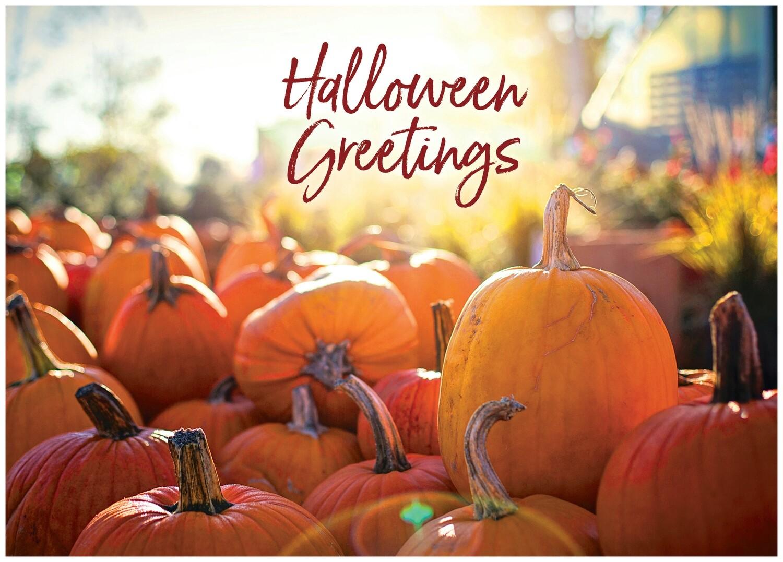 FRS 624 / 7775   Halloween Card