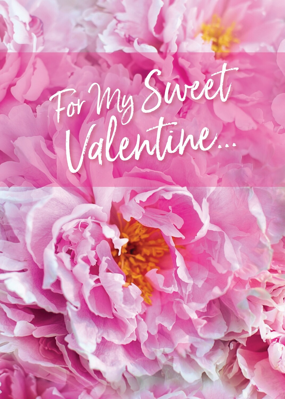 FRS3352   Valentine's Day Card