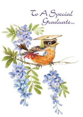 FRS4436   Graduation Card