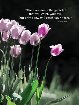 VPS06010oversize   Valentine's Day Card