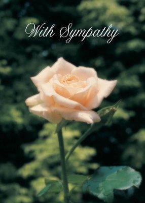 FR1101   Sympathy Card
