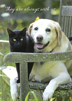 FR2117 Sympathy Card / Pet