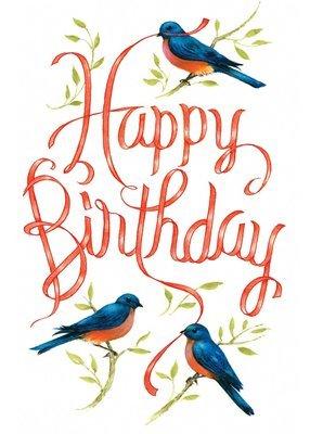 FR4820   Birthday Card