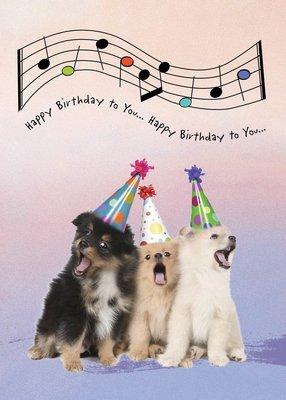 FR8327  Birthday Card