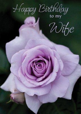 FR0203   Family Birthday Card / Wife