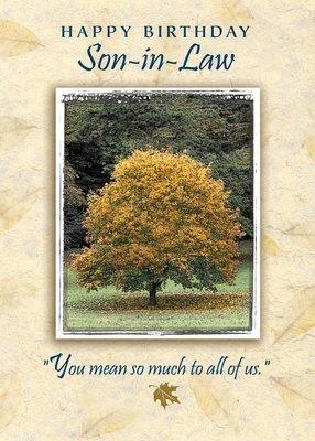 FR0230  Family Birthday Card / Son-In-Law