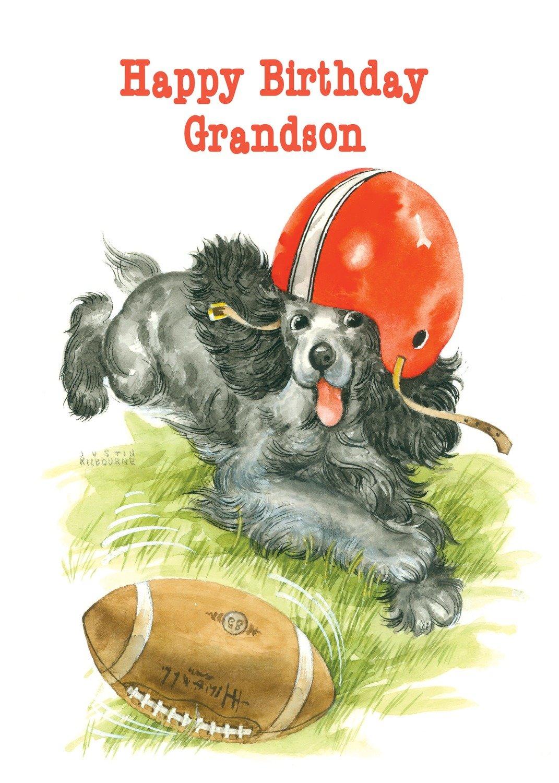 FR0250  Family Birthday Card / Grandson