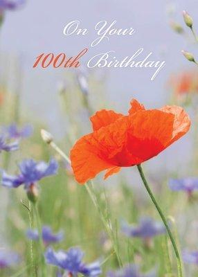 FR8402  Milestone Birthday Card / 100