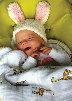 FR1524   Congratulations Baby Card