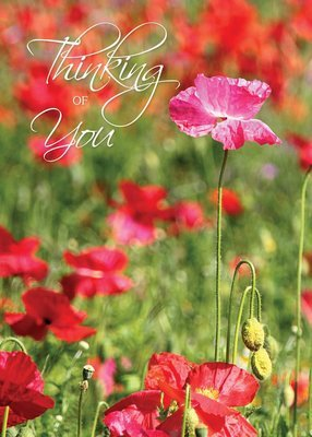 FR7131   Thinking of You Card