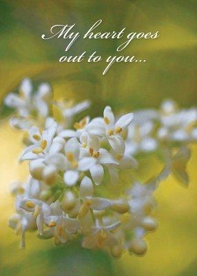 FR1370  Sympathy Card