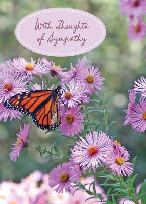 FR2114  Sympathy Card