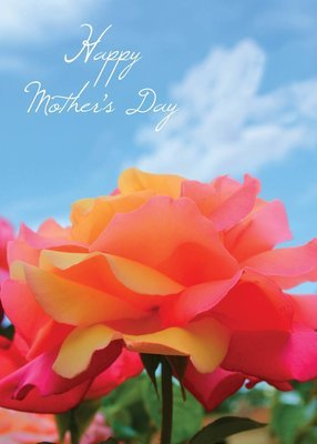 FRS6413   Mother's Day Card