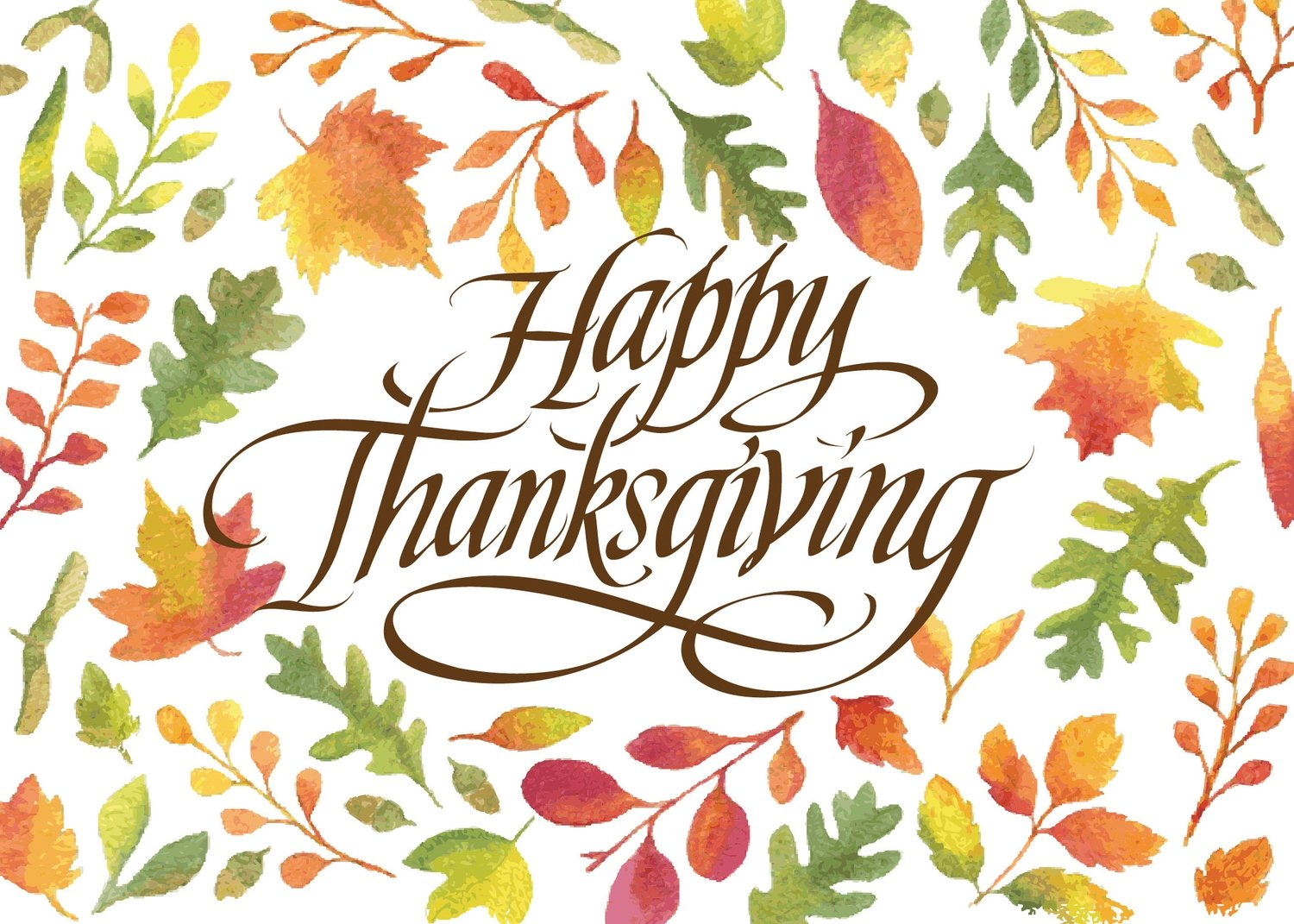 FRS 595 / 7900  Thanksgiving Card