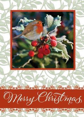 FRS 541 / 5107  Christmas Card