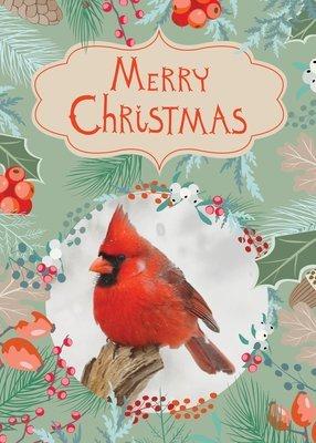 FRS 546 / 5135  Christmas Card