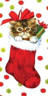 FRS5713  Money Holder / Christmas
