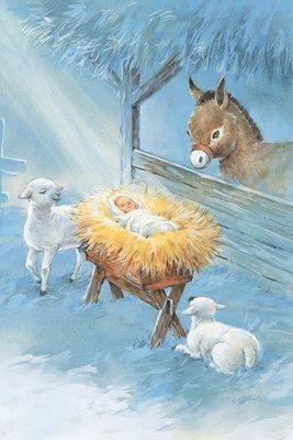 FRS 221 / 6007   Christmas Card