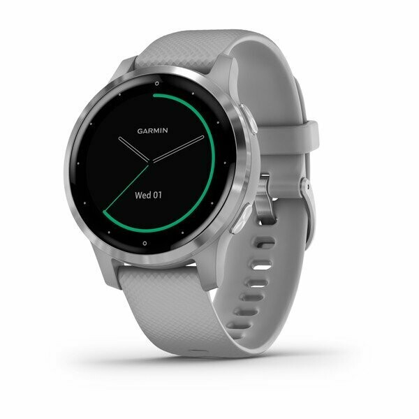 Garmin Vivoactive 4s - Powder Grey with Silver Hardware