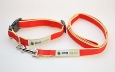 Eco Paws Bamboo Collar sml Red