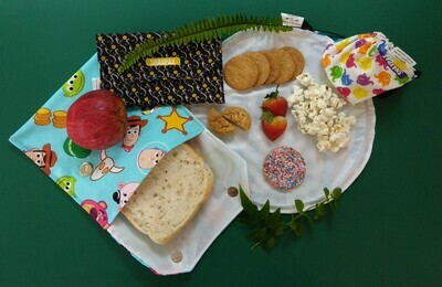 Snaxpax snack bags and travel plate - 3 piece set