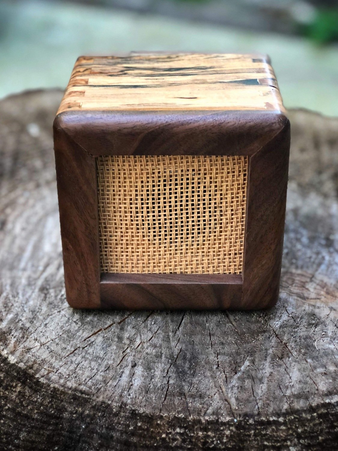 Baby burr Bluetooth speaker